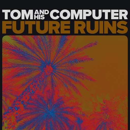 Future Ruins by TOM and his Computer