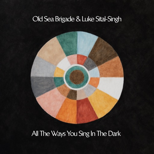Art for Call Me When You Land by Old Sea Brigade & Luke Sital-Singh