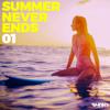 Various Artists - Summer Never Ends 01 artwork