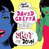David Guetta - Shot me Down (feat. Skylar Grey)