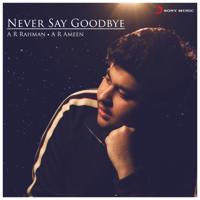A. R. Rahman & A.R. Ameen - Never Say Goodbye (From