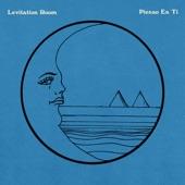 levitation room - Pienso En Ti