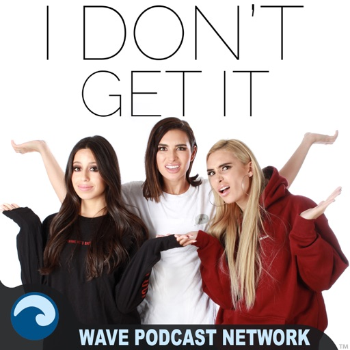 Cover image of I Don't Get It