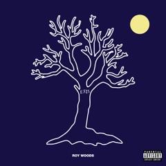Drama (feat. Drake)