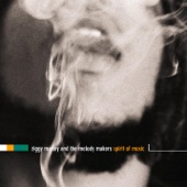 Ziggy Marley And The Melody Makers - Higher Vibrations