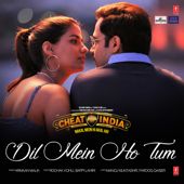 Dil Mein Ho Tum (From