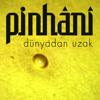 Pinhani - Dünyadan Uzak artwork