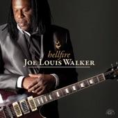 Joe Louis Walker - Too Drunk to Drive Drunk