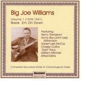 Big Joe Williams - Stepfather Blues