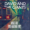 David & The Giants - What Are You Waiting For?  artwork