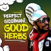 Perfect Giddimani - Good Herbs