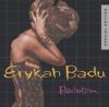 Erykah Badu - Next Lifetime artwork