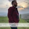 Aron Afshar - Madar artwork