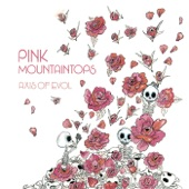 Pink Mountaintops - Slaves