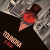 Toundra - Das Cabinet des Dr. Caligari (Original Re-Score) kunstwerk