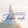 Armin Muzaferija i Sarajevska filharmonija - Studen Vodo bild