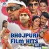 Bhojpuri Film Hits