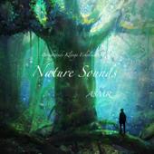 自然の音 ASMR 落ち着く音 日常の音 環境音 - リラックス 癒し 作業用bgm 寝れる音 -