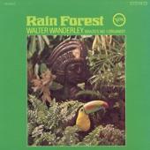 Walter Wanderley - Rain