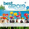 Verschiedene Interpreten - Best Of 2019 - Frühlingshits Grafik