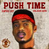 Push Time - Salaam Remi & Super Cat