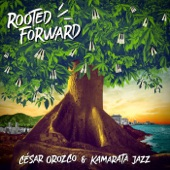 Rooted Forward