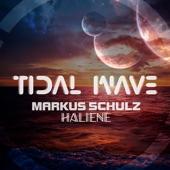 Markus Schulz - Tidal Wave