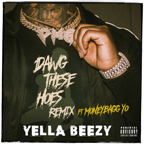 Dawg These Hoes (Remix) [feat. Moneybagg Yo] - Single