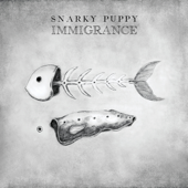 Immigrance - Snarky Puppy Cover Art