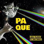 Ana Tijoux - Pa Que (feat. PJ Sin Suela)