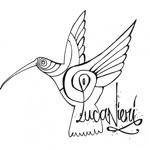 Luca Nieri - Hummingbird