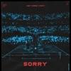 Sorry (feat. ISÁK) by Alan Walker