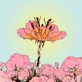 Droll - Bitter Flower