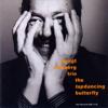 Bengt Hallberg - The Tap-Dancing Butterfly (feat. Sture Åkerberg & Ronnie Gardiner) bild