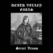 Death Valley Girls - Sanitarium Blues