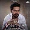 Dil Mera Ronda Ae feat Anjali Single