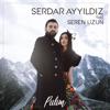 Serdar Ayyıldız - Pulim (feat. Seren Uzun) artwork