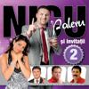 Various Artists - Nicu Paleru Si Invitatii, Vol. 2 artwork