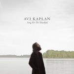 Avi Kaplan - Song For The Thankful