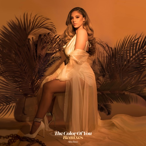 Alina Baraz - The Color of You (Remixes)