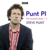 Steve Punt - Punt, PI: Series 1-5  artwork