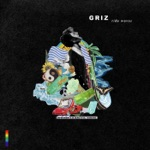 GRiZ - A New Day (feat. Matisyahu)