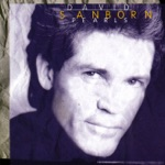 David Sanborn - Everything Must Change