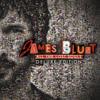 James Blunt - Carry You Home (iTunes Live London Festival '08) artwork