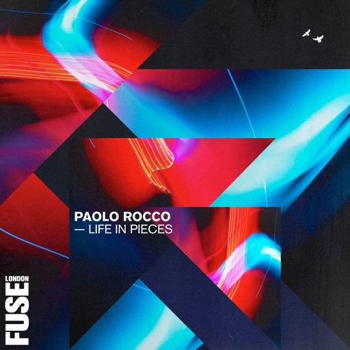 Life in Pieces by Paolo Rocco