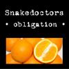 Snakedoctors - Decent Obligation artwork