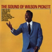 Wilson Pickett - I Need A Lot Of Loving Every Day [LP Version]