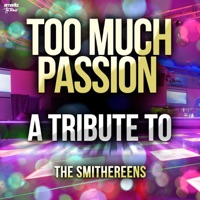 Too Much Passion (A Tribute to the Smithereens) - Single