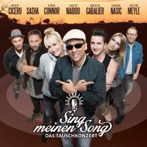 Verschiedene Interpreten - Sing meinen Song - Das Tauschkonzert