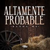 Altamente Probable - Banda Sinaloense MS de Sergio Lizarraga